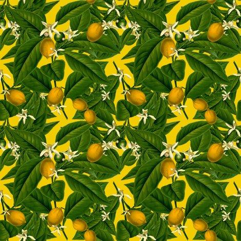 Rlemon_botanical___whist_____peacoquette_designs___copyright_2014_shop_preview