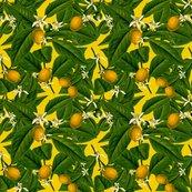 Rlemon_botanical___whist_____peacoquette_designs___copyright_2014_shop_thumb