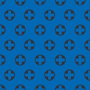 Blue Swissy
