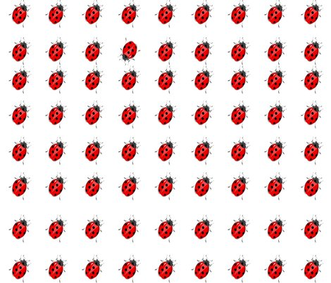 Rrrspoonflower_bee__tle__different_shop_preview