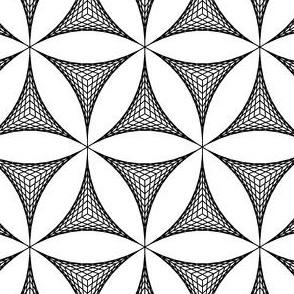 string R3 deltoid + lens