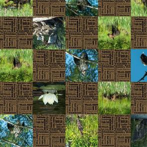 checker_board_brown_camping_1