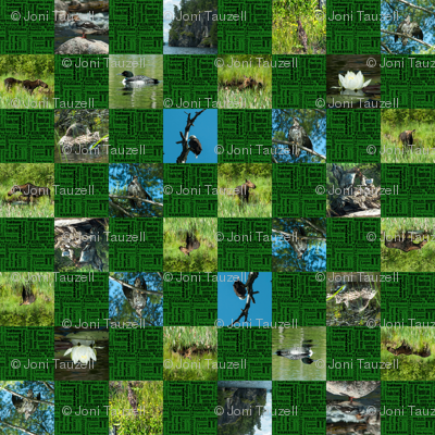 Rchecker_board_green_campning1_preview