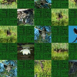 checker_board_green_campning1