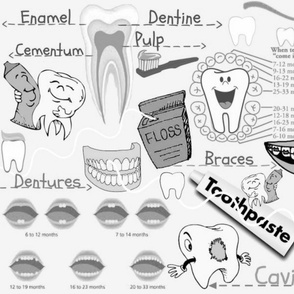 DENTAL ANATOMY SILVER