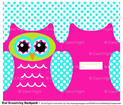 Owl Drawstring Backpack