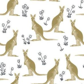 kangaroos_brown