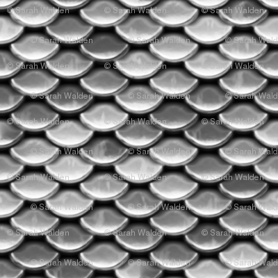 Scales ~ Silver