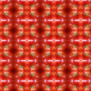 Kaleidoscope Red