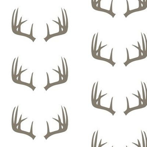 brown antlers // rustic woods collection