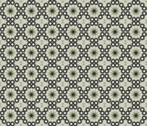 Butterfy - Wing-black and white1 fabric by koalalady on Spoonflower - custom fabric