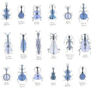 bluegrass beetles small