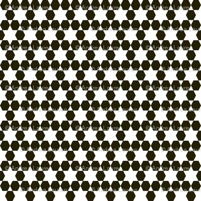 Hexagons - by Andrea Lauren