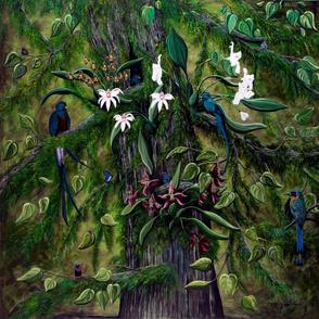 The Jungle of Guatemala