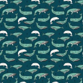 whales // ocean nautical summer kids animals blue water
