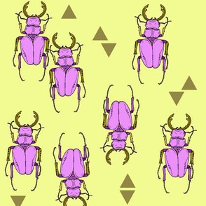 Beetles and Triangles