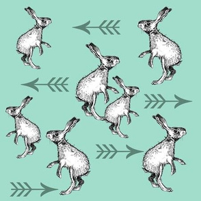 Rabbits and Arrows