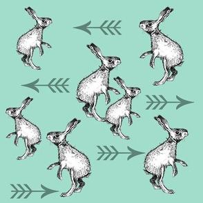 Rabbits and Arrows