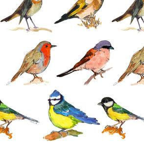 Bird Repeat