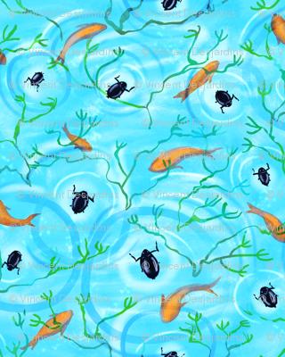 Whirligig Beetles and Goldfish