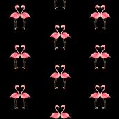 Flamingos and black