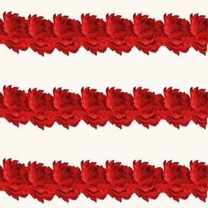 linear roses