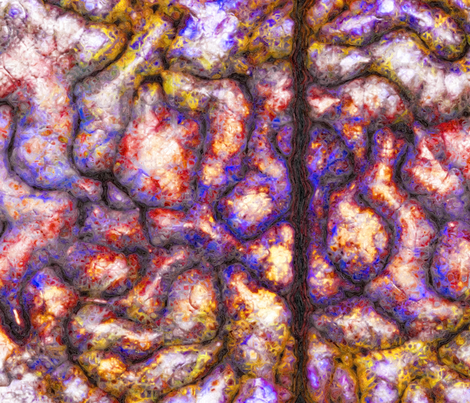 —neurallacies—11 fabric by thoughtstorms on Spoonflower - custom fabric