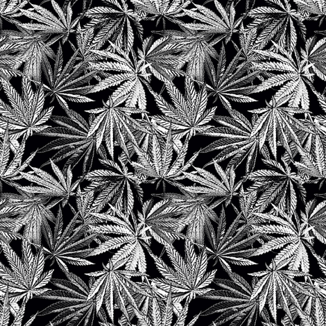 Mix Leaf Indica B/W fabric by camomoto on Spoonflower - custom fabric