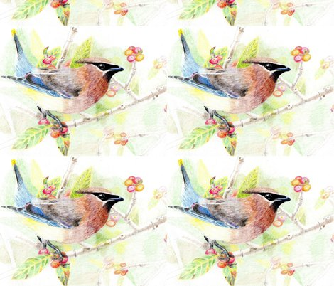 Rrrrmy_drawing_of_a_cedar_waxwing__2__shop_preview