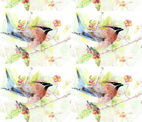 Cedar Waxwing, fat quarter and yard sizing fabric by clotilda_warhammer on Spoonflower - custom fabric
