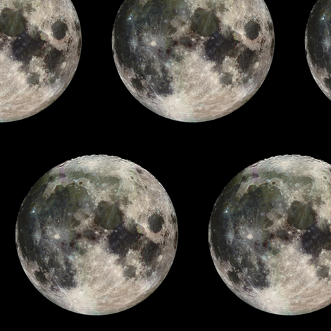 Full Moon Night fabric by janinez on Spoonflower - custom fabric