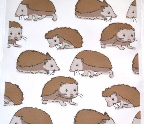 Rrhedgehog_on_white_comment_491665_preview