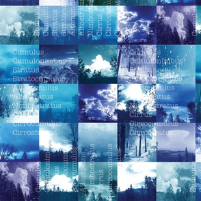 Cloud Catalog- Blues