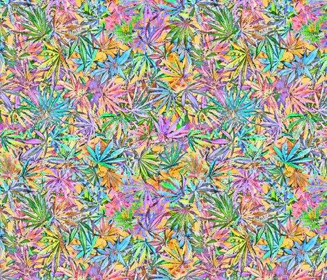 Rcannabischaos_4spf_shop_preview