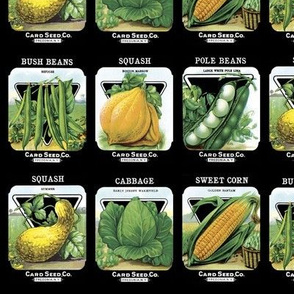 Seed Packets - 7in