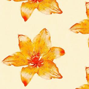 Lilies - Orange
