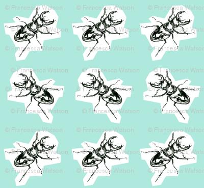 BeetleGreen2