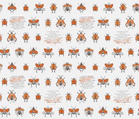 BEETLE_BOTANICA fabric by j9design on Spoonflower - custom fabric