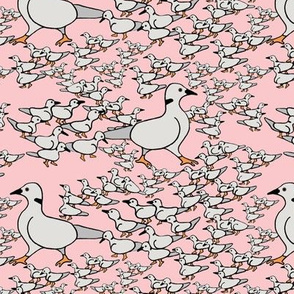 Little Dove leads his flock- pink