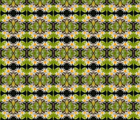 White Water Lilies 7822 fabric by falcon11 on Spoonflower - custom fabric