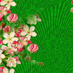 Japanese_flowering_crabapple_repaired_4200_X_3150