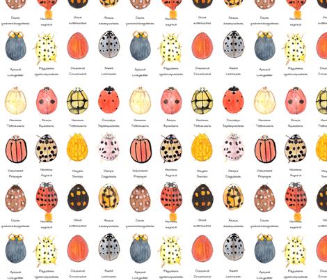 Ladybird, Ladybird. fabric by wiccked on Spoonflower - custom fabric