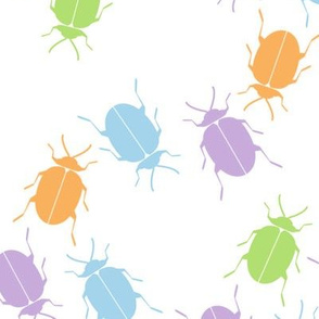 Multicolored Beetles