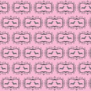 Framed Dapples on pink