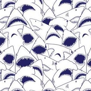 Shark Bite