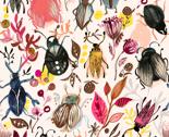 Rshannon_newln_beetles2_2014_thumb