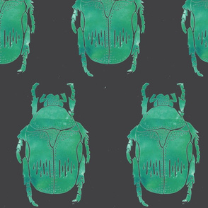jewel beetle gray