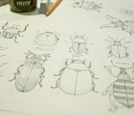 Sketchy Garden Beetles by Friztin
