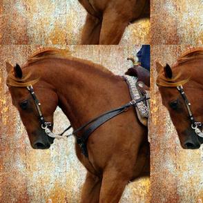sorrel western 2
