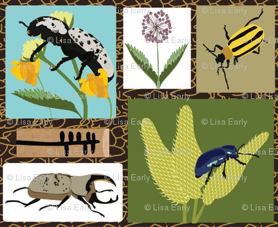 Rocky Mountain Beetles